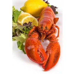 2-pk-2-count-Maine-Giant-Lobster-Tails-1620-oz-0
