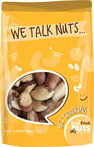 BRAZIL-NUTS-Perfectly-Roasted-with-Himalayan-Salt-Resealable-Bag-Fresh-Delicious-Crunchy-Naturally-Healthy-and-Nutritious-contains-calcium-highest-natural-sources-of-selenium-0