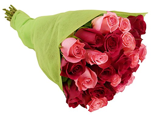 Benchmark-Bouquets-24-Long-Stem-Blushing-Beauty-Rose-Bouquet-0-0