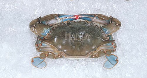 Raw-Domestic-Soft-Shell-Crabs-6-ct-Whales-Frozen-0