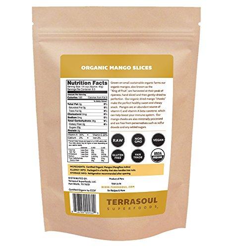 Terrasoul-Superfoods-Organic-Mango-Slices-12oz-0-0