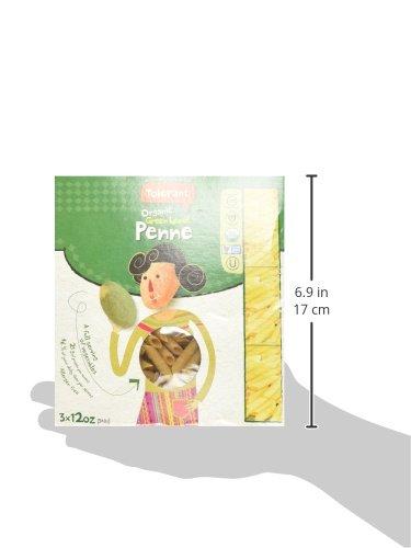 Tolerant-Organic-Green-Lentil-Penne-Three-12-oz-Packs-0