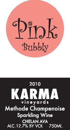 2010-Karma-Vineyards-Pink-Bubbly-Methode-Champenoise-Sparkling-Wine-750-mL-0