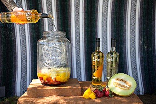 fre-be-Pineapple-Wine-750-mL-0-1